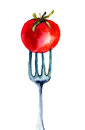 Tomato on the fork watercolor illustration Royalty Free Stock Image