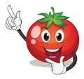 Tomato illustration of a on a white background Royalty Free Stock Photography