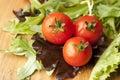 Tomato in Lettuce Salad Royalty Free Stock Photo