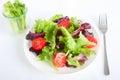 Tomato lettuce salad Royalty Free Stock Photo