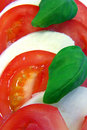 Tomato and mozarella Royalty Free Stock Photo