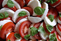Tomato and Mozzarella Royalty Free Stock Images