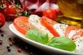 Tomato and mozzarella Royalty Free Stock Photo
