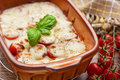 Tomato and mozzarella gratin Stock Image