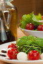 Tomato Mozzarella and Rocket Salad Royalty Free Stock Photography