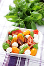 Tomato and mozzarella salad Royalty Free Stock Photo