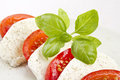 Tomato mozzarella salad Stock Photo
