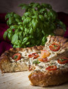 Tomato pie a whole topped with cheese green onions and parsley with herbs in the backgrounda whole topped with cheese Royalty Free Stock Photos