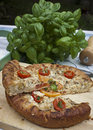 Tomato pie a whole topped with cheese green onions and parsley with herbs in the backgrounda whole topped with cheese Stock Photography