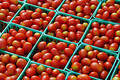 Tomato Sale Royalty Free Stock Photo
