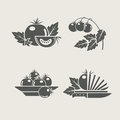 Tomato set icons Royalty Free Stock Photos