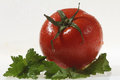 Tomato single fresh white closeup Stock Photo