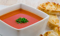 Tomato soup and cheese sandwich Royalty Free Stock Photo