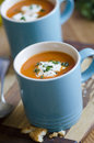 Tomato soup cream of with chives Royalty Free Stock Images