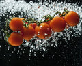 Tomato splash in water Royalty Free Stock Photo
