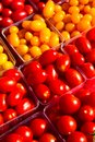 Tomato Variety Stock Photography