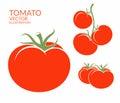 Tomato. vegetables on white background Royalty Free Stock Photo