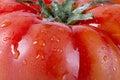 Tomatoe macro shot