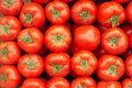 Tomatoes the background of red Royalty Free Stock Images
