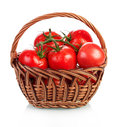 Tomatoes in basket Royalty Free Stock Photo