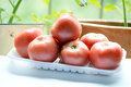 Tomatoes belong to fruit or vegetable photo taken after shopping Stock Photography