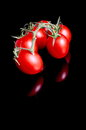 Tomatoes on black red background Stock Image