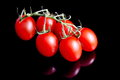 Tomatoes on black red background Stock Photography