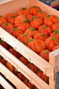 Tomatoes in a box Royalty Free Stock Photo
