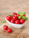 Tomatoes cherry and basil in bowl selective focus Stock Images