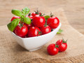 Tomatoes cherry and basil in bowl selective focus Royalty Free Stock Photo