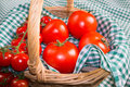Tomatoes closeup Royalty Free Stock Image