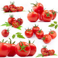 Tomatoes Collection Stock Photo