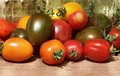 Tomatoes colorful mix of fresh Royalty Free Stock Photo