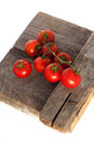 Tomatoes cooked with herbs for the preservation on old wooden tabletomatoes on old Royalty Free Stock Photo