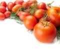 Tomatoes fresh isolated on white background Stock Photography