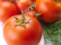 Tomatoes fresh isolated on white background Royalty Free Stock Images