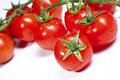 Tomatoes fresh vegetable background Royalty Free Stock Photo