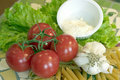 Tomatoes, Garlic and Pasta Royalty Free Stock Photo