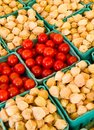 Tomatoes and Ground Cherries Royalty Free Stock Image