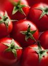 Tomatoes group closeup top view Stock Photos