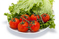 Tomatoes and Lettuce on a Plate Royalty Free Stock Photos