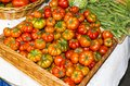 Tomatoes at market in la spezia italy Stock Image