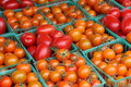 Tomatoes, orange and red Stock Images