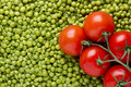 Tomatoes and Peas Stock Photography