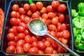 Tomatoes presented on salad bar Royalty Free Stock Photo