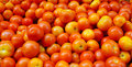 Tomatoes for sale at the market Royalty Free Stock Photo