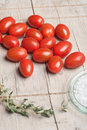 Tomatoes and salt Royalty Free Stock Images