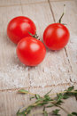 Tomatoes an salt Royalty Free Stock Photos
