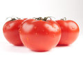 Tomatoes sprinkled with water Stock Photos