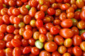 Tomatoes texture Royalty Free Stock Photo